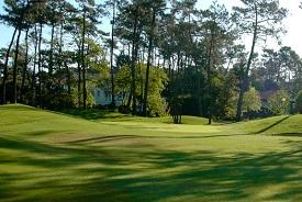 Golf 275 184