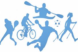 Sport divers 273 184