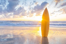 Surf 273 x 184
