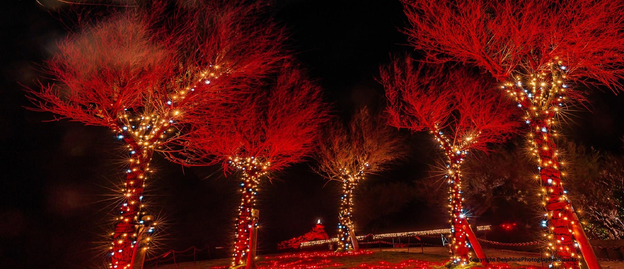 Illuminations Biarritz 2020