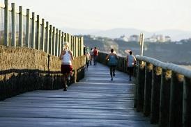 Promenade littorale 275 184